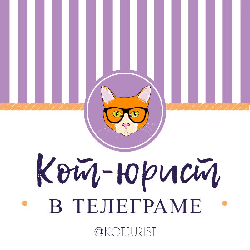 Кот-юрист в Телеграме